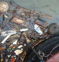Picture of floating rubbish behind my boat